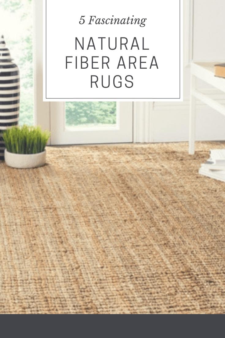 Natural Fiber Area Rugs