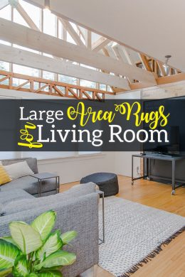 Large Area Rugs for Living Rooms